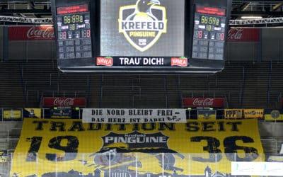 Krefeld Pinguine vs. Eisbären Berlin 17.01.2021