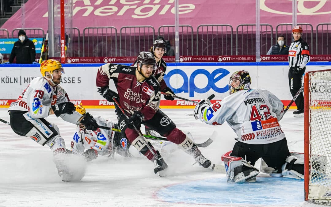 Kölner Haie vs Fischtown Pinguins Bremerhaven 12.02.2021